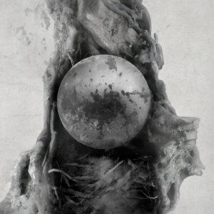 moanaa-passage-cover-art