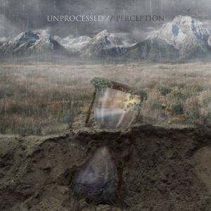 unpocessed-perception-cover-art